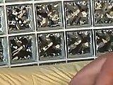 mature babe, big tits, black mature fuck, blow job scenes, brunette mature sex, bukkake, cocks, ebony mature films
